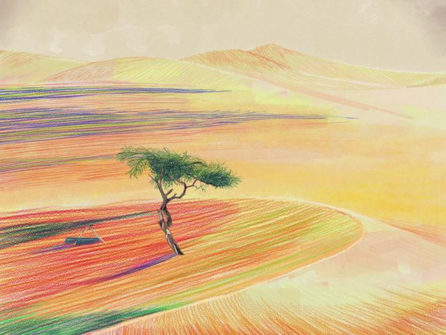 Acacia del Ténéré
